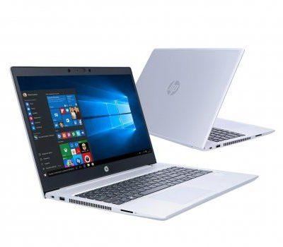 HP ProBook 450 G7 (8VU61EA)